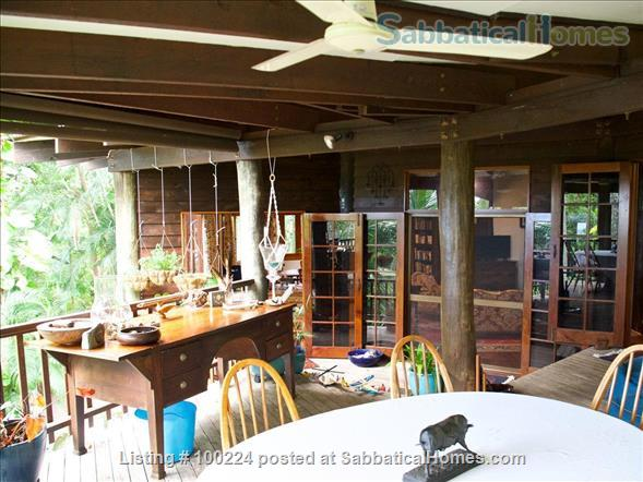 a rainforest pole home, backing onto the cassowary hills with views of the coral sea Home Rental in Killaloe, QLD, Australia 4