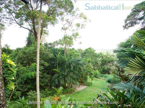 a rainforest pole home, backing onto the cassowary hills with views of the coral sea Home Rental in Killaloe, QLD, Australia 7