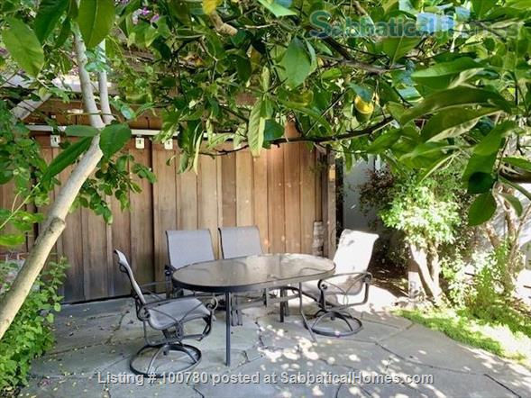 Furnished Albany Garden Cottage Near Solano Avenue Berkeley Home Rental in Albany 1 - thumbnail