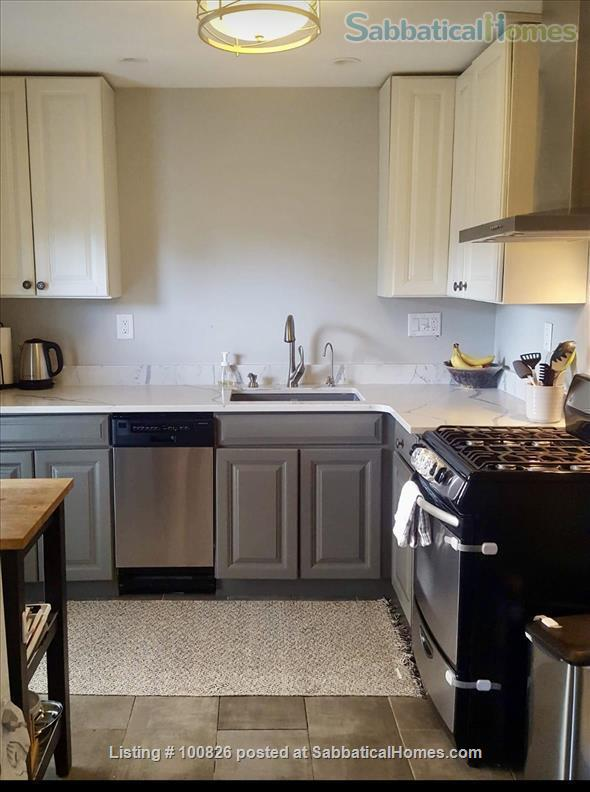 OLD WESTSIDE-Renovated flat.  Walk to campus/downtown-All Utilities/WIFI Home Rental in Ann Arbor, Michigan, United States 0
