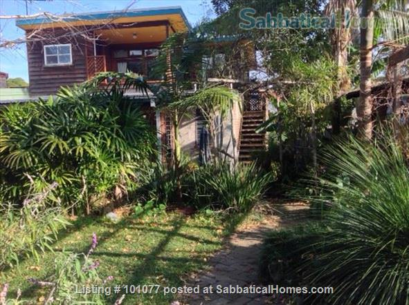 Annandale garden studio Home Rental in Annandale, New South Wales, Australia 4