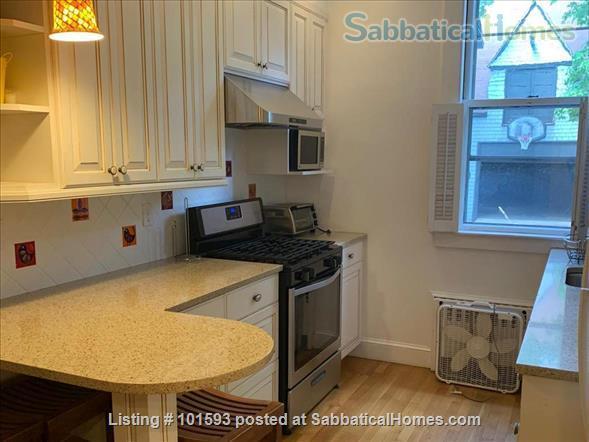 Brookline, unique location, (3Br/2Bthr)  Home Rental in Brookline, Massachusetts, United States 5