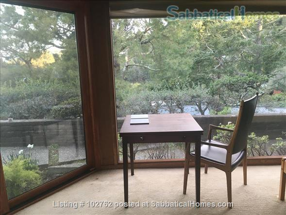 Master suite in  Berkeley Hills Home: Separate Private Entrance Home Rental in Berkeley, California, United States 2