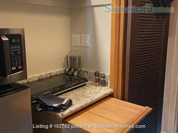 Master suite in  Berkeley Hills Home: Separate Private Entrance Home Rental in Berkeley, California, United States 7