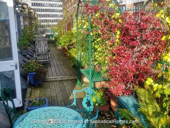 One Bedroom Apartment  Central London - 2 mins walk  from Westminster Abbey Home Rental in Greater London, England, United Kingdom 1