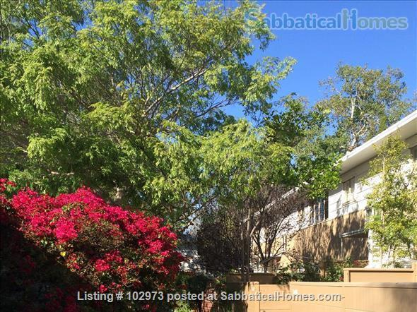 Peaceful 2 bed condo in beautiful area near Culver City. Home Rental in Los Angeles, California, United States 1