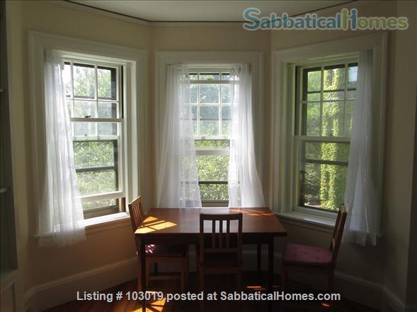 Beautiful, Sunny Apartment near Harvard Square Home Rental in Cambridge, Massachusetts, United States 0