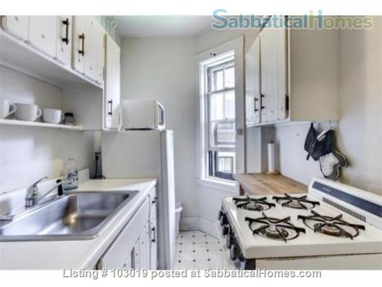 Beautiful, Sunny Apartment near Harvard Square Home Rental in Cambridge, Massachusetts, United States 4