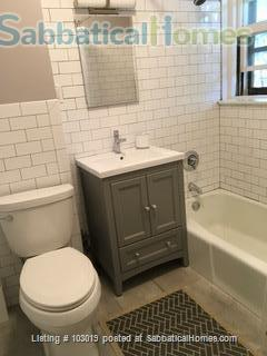 Beautiful, Sunny Apartment near Harvard Square Home Rental in Cambridge, Massachusetts, United States 5