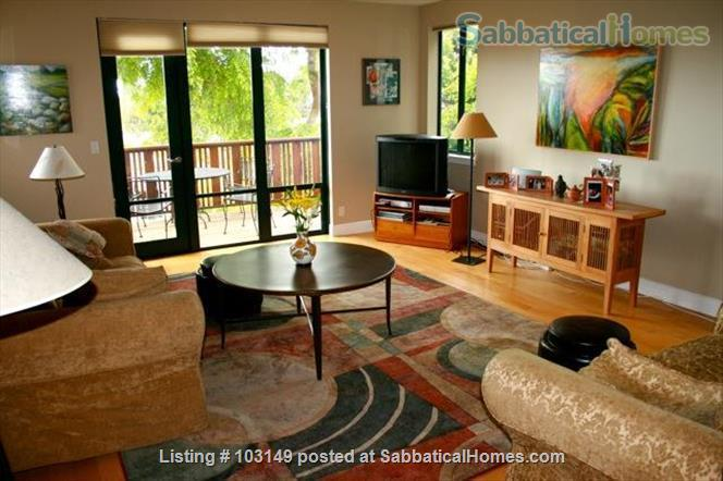 North Berkeley Town Home: 3 story, 3 bedrooms, 3 baths with GG view Home Rental in Berkeley, California, United States 0