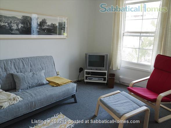 Sunny and quiet one bedroom apartment in Little Italy Home Rental in Ottawa, Ontario, Canada 1