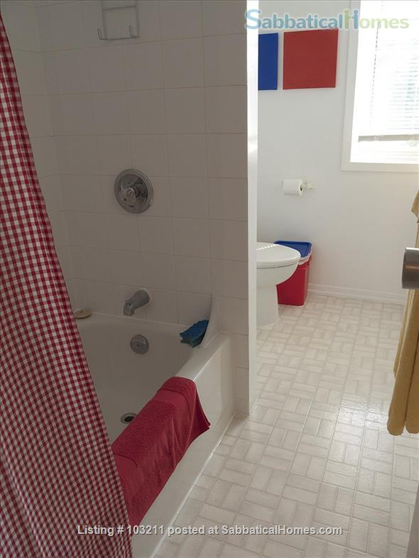 Sunny and quiet one bedroom apartment in Little Italy Home Rental in Ottawa, Ontario, Canada 3