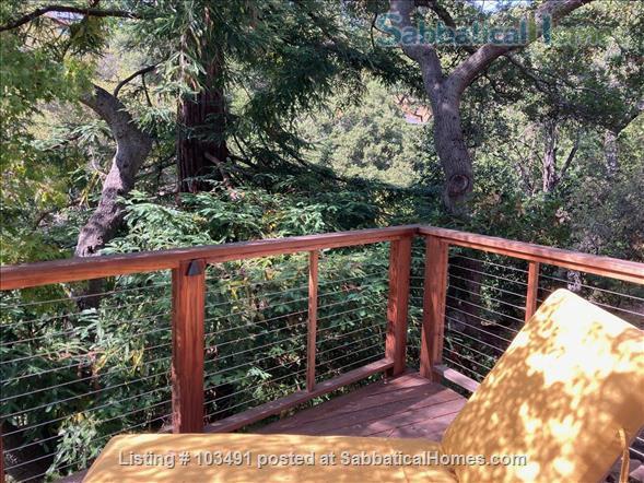Peaceful North Berkeley in-law overlooking creek Home Rental in Berkeley, California, United States 9