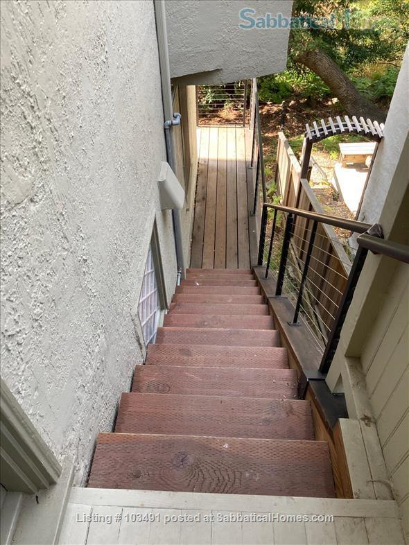 Peaceful North Berkeley in-law overlooking creek Home Rental in Berkeley, California, United States 8
