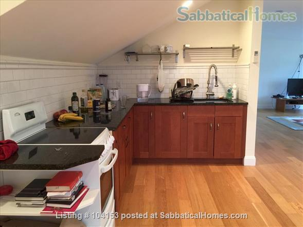 Luxury Furnished 2 Bedroom Apartment with great views in Coolidge Corner Home Rental in Brookline, Massachusetts, United States 1