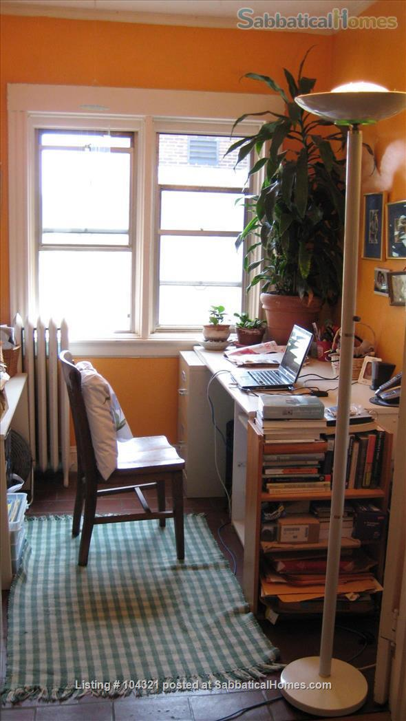 Apartment to rent in Cambridge, MA Home Rental in Cambridge, Massachusetts, United States 4