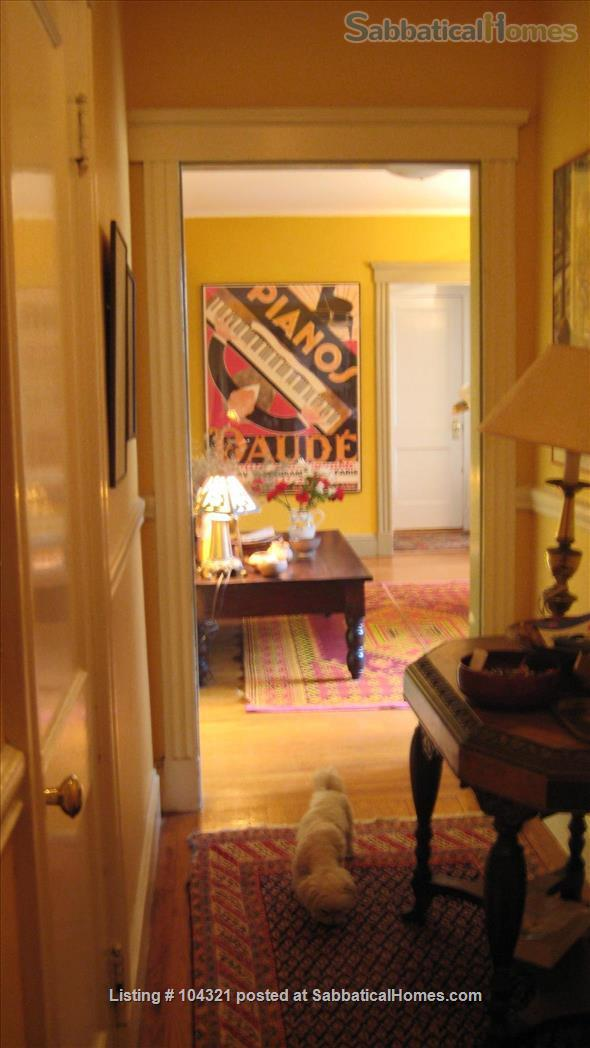 Apartment to rent in Cambridge, MA Home Rental in Cambridge, Massachusetts, United States 5