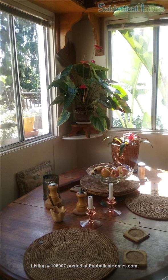 Beautiful small house in Berkeley annex, separate work studio, private  garden 10 minutes from U.C. campus Home Rental in Albany, California, United States 1