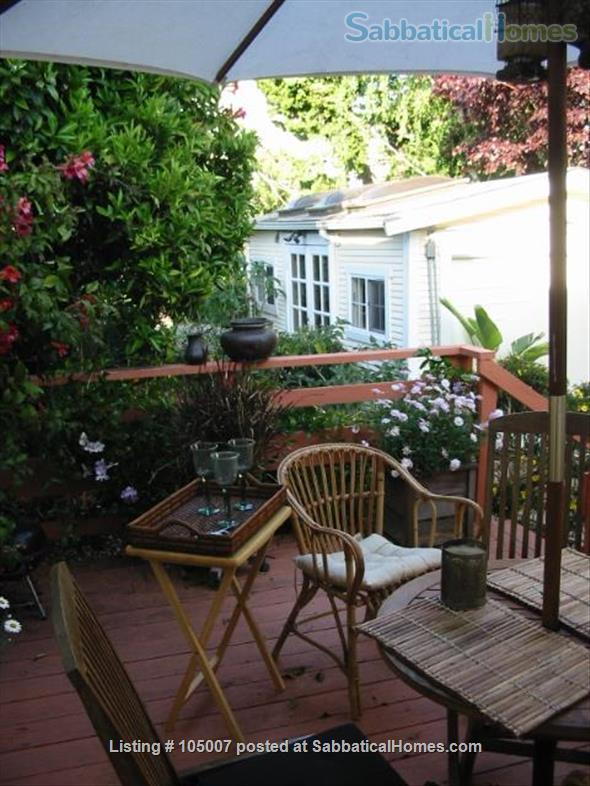 Beautiful small house in Berkeley annex, separate work studio, private  garden 10 minutes from U.C. campus Home Rental in Albany, California, United States 0