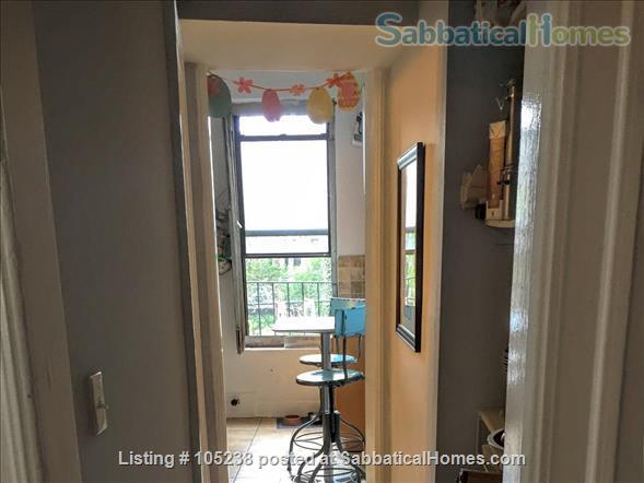 Family-friendly 2BR in leafy Park Slope Brooklyn Home Rental in Park Slope, New York, United States 3