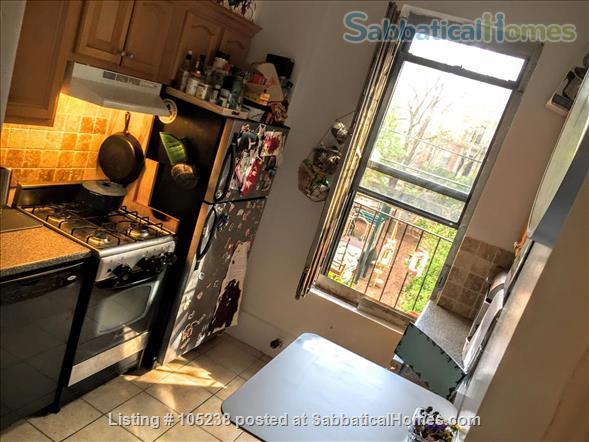 Family-friendly 2BR in leafy Park Slope Brooklyn Home Rental in Park Slope, New York, United States 4