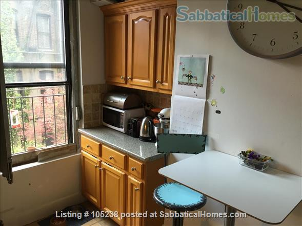 Family-friendly 2BR in leafy Park Slope Brooklyn Home Rental in Park Slope, New York, United States 5