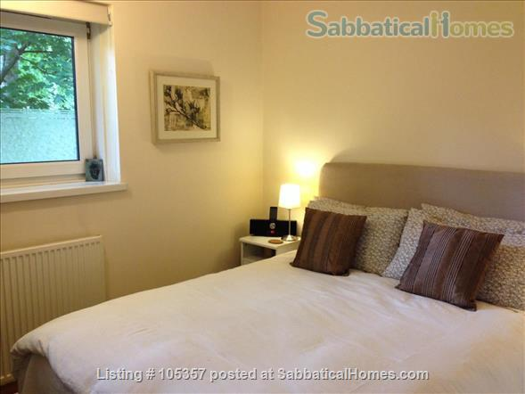 Lovely one bedroom flat in South London (Zone 2) Home Rental in Greater London, England, United Kingdom 5