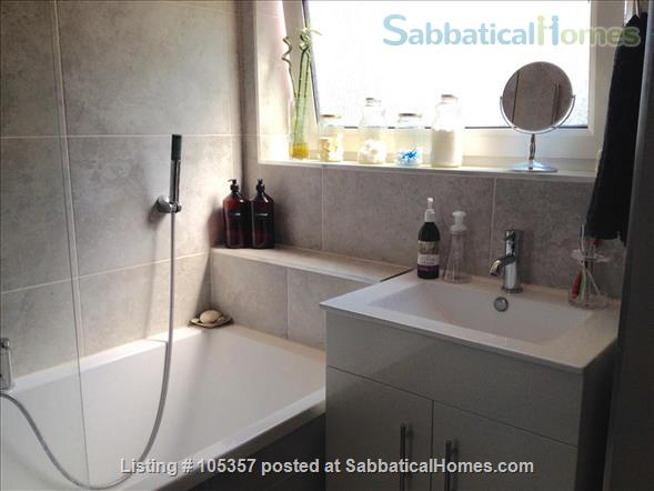 Lovely one bedroom flat in South London (Zone 2) Home Rental in Greater London, England, United Kingdom 6