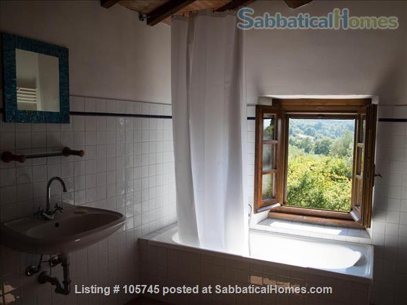 Sabbatical / Weekend Retreat in Umbria (Italy) Home Rental in Monteleone D'orvieto, Umbria, Italy 6