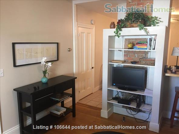 Cambridge fully FURNISHED, Short Term One Bedroom  INMAN SQ Home Rental in Cambridge, Massachusetts, United States 0