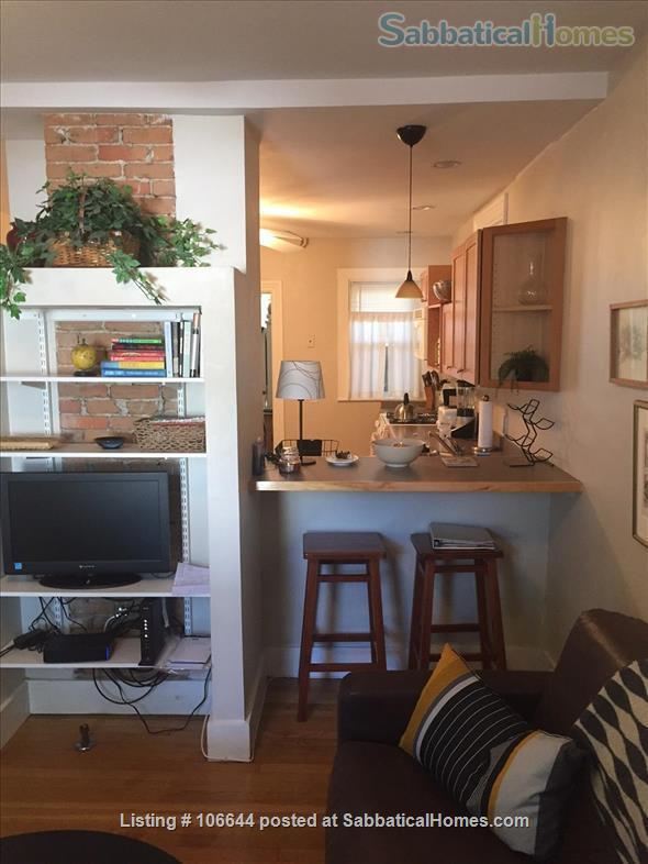 Cambridge fully FURNISHED, Short Term One Bedroom  INMAN SQ Home Rental in Cambridge, Massachusetts, United States 2