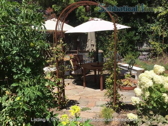 Claremont-Elmwood Elegant Apartment  Home Rental in Berkeley, California, United States 9