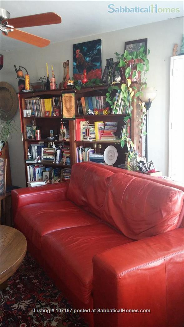 Private Garden Bedroom,  Shared House with Cat & Quiet Owner,  Lush Yard Home Rental in Berkeley, California, United States 9