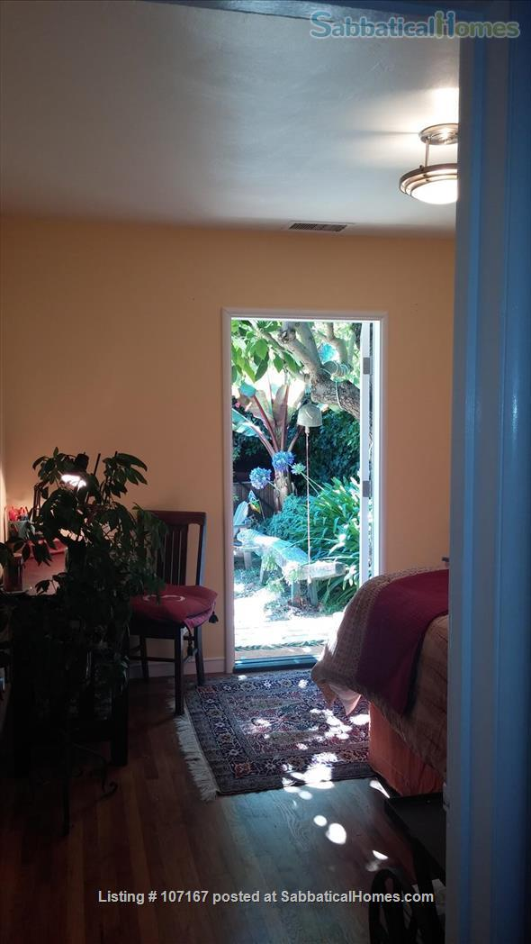 Private Garden Bedroom,  Shared House with Cat & Quiet Owner,  Lush Yard Home Rental in Berkeley, California, United States 0