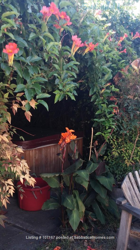 Private Garden Bedroom,  Shared House with Cat & Quiet Owner,  Lush Yard Home Rental in Berkeley, California, United States 5
