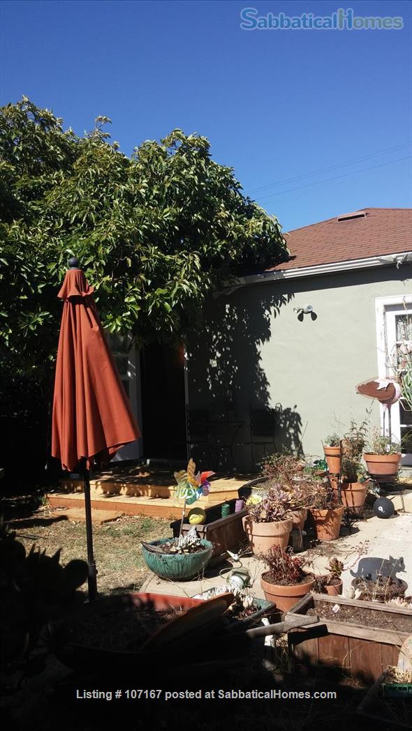 Private Garden Bedroom,  Shared House with Cat & Quiet Owner,  Lush Yard Home Rental in Berkeley, California, United States 7