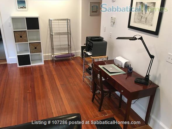 SuperSized, Sunny, 1 BR apartment:  walk to subway@Davis Square Home Rental in Somerville, Massachusetts, United States 3