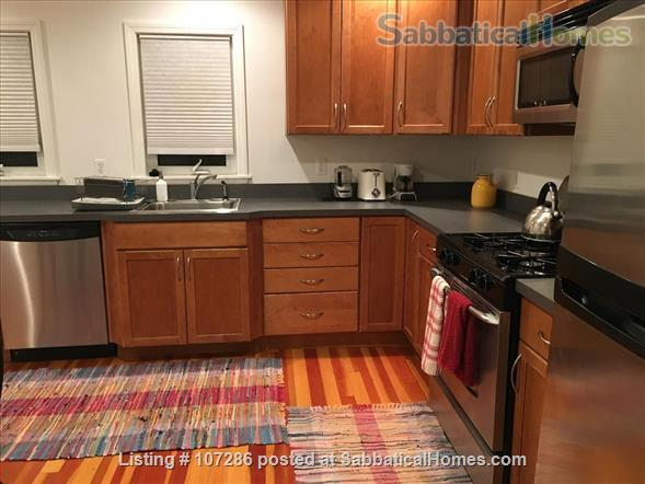 SuperSized, Sunny, 1 BR apartment:  walk to subway@Davis Square Home Rental in Somerville, Massachusetts, United States 4