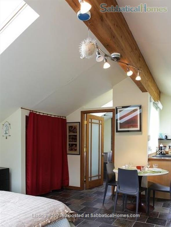 Quiet, furnished private carriage house studio apt. w/flexible start  & stop date Home Rental in Ann Arbor, Michigan, United States 7