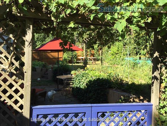 Quiet location, 3 Bdrms, Office,  Dog-friendly,  private garden near Arlington Ctr. Home Rental in Arlington, Massachusetts, United States 9