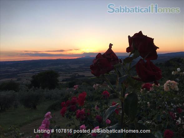 Italian Green Dreamhouse in Umbria Home Rental in Guardea, Umbria, Italy 8