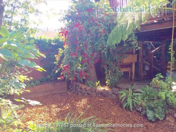 Garden Apartment in Desirable Grand Lake Area Home Rental in Oakland, California, United States 7