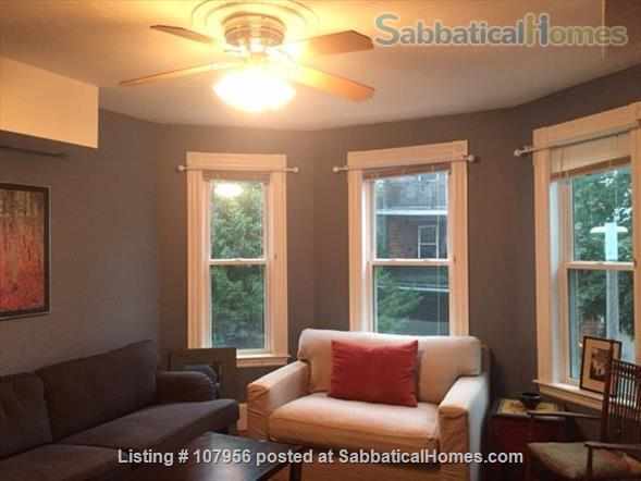 Beautiful Condo in Jamaica Plain Available Jan-June (Utilities Included) Home Rental in Boston 5