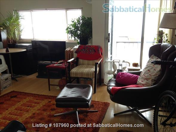 Large, Light, Furnished Room with View, Private Bath  & A/C in 2BR 2BA Apt. Home Rental in Cambridge, Massachusetts, United States 0