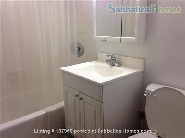 Large, Light, Furnished Room with View, Private Bath  & A/C in 2BR 2BA Apt. Home Rental in Cambridge, Massachusetts, United States 2