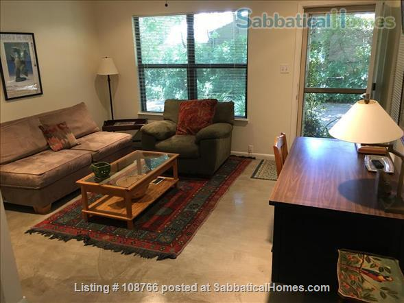 Private Hyde Park cottage near UT; all util/wifi/bike incl.; Washer/dryer Home Rental in Austin, Texas, United States 0