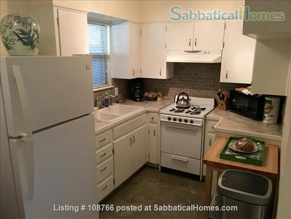 Private Hyde Park cottage near UT; all util/wifi/bike incl.; Washer/dryer Home Rental in Austin, Texas, United States 3