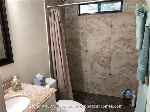 Private Hyde Park cottage near UT; all util/wifi/bike incl.; Washer/dryer Home Rental in Austin, Texas, United States 6