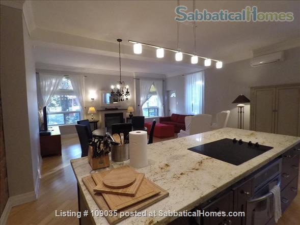 Furnished Homes in Family Friendly  Little Italy  Near UofT and Hospitals Home Rental in Toronto 2