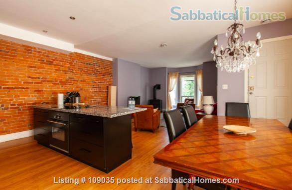 Furnished Homes in Family Friendly  Little Italy  Near UofT and Hospitals Home Rental in Toronto 5 - thumbnail